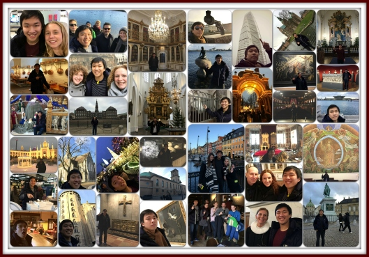 Collage of my lone adventure to Denmark and Sweden!